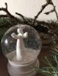Sněžítka bílá - anděl štíhlý