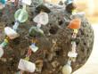 Korálky z minerálů