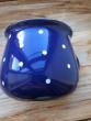 Velký krajáč puntík modrý