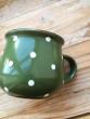 Hrneček puntík zelený