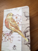 Zápisník ptáček